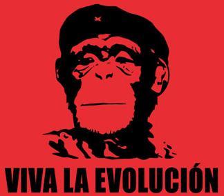 Vivalaevolucion-monkey